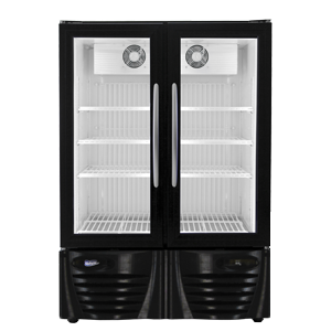 Stand Up Freezer With Glass Doors